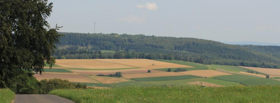 Umgebung Knüllgebirge Eisenberg